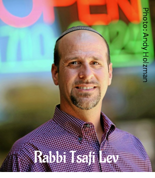 Rabbi Tsafi Lev