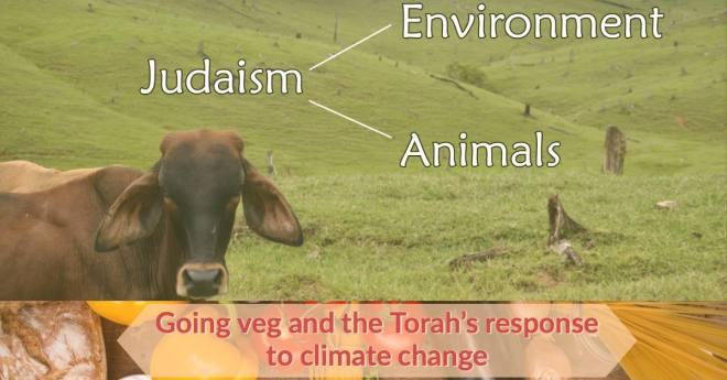Judaism Environment