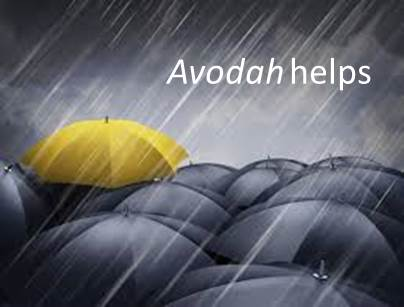 Avodah helps 2